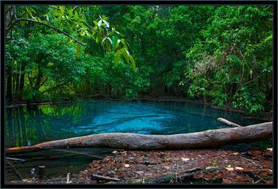минеральный источник ... тайланд миниральный источник озеро лес
