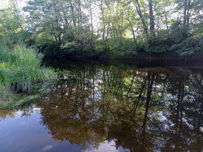 Отражение отражение
