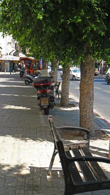 Т. Авив,Алленби!