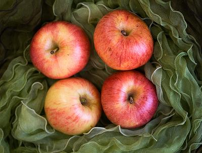 яблоки яблоки