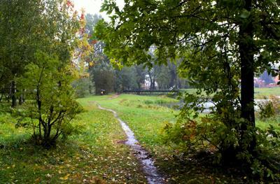Осень   хмурая   пора , вот   и   дождь   идёт   с    утра !