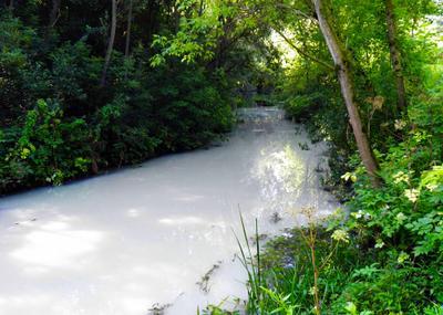 Сказочная речка речка берега молоко