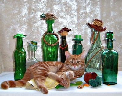 Какой реприманд неожиданный! кот стеклотара блюдо