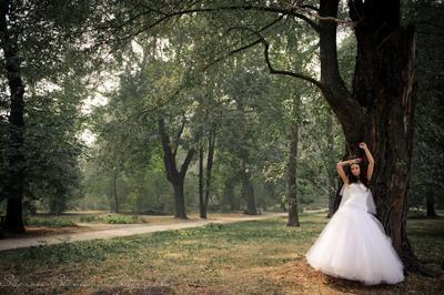 wedding in England d3s Nikon Wedding