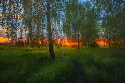 Догорает заря кострома пейзаж лето закат