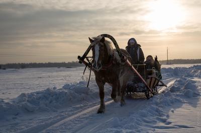 Зимняя повозка зима снег лошадь сани мороз