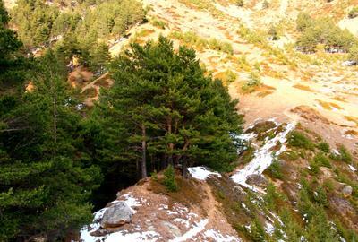 Медвежья тропа. Кавказ Балкария Приэльбрусье