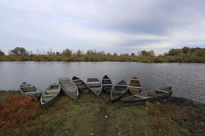 Девять лодок
