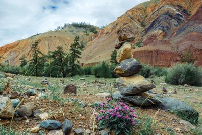 """""""Марс"""" на Алтае : Цветные горы Кош-Агачский района"""