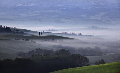Tuscan 2011