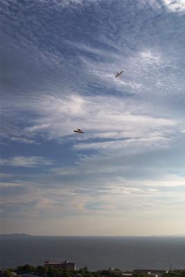 Танец в облаках Владивосток Амурский залив Август Птицы Облака