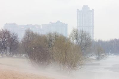 весна не за горами город туман парк залив апрель
