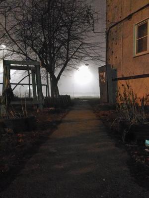 Туман Туман ночь красота