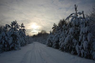 Чухлома1 Чухлома зима