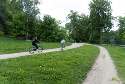 *** парк природа девушки велосипед дорожки
