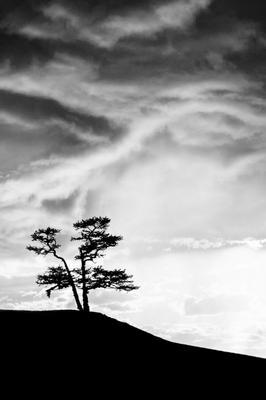 На краю света Природа Байкал Ольхон остров пейзаж черно-белая Иркутская область Россия природа