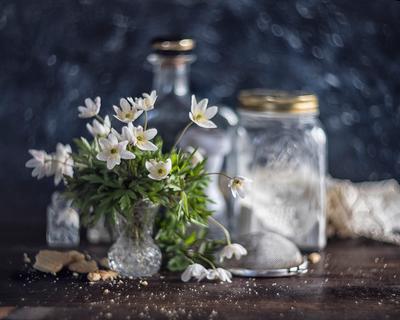 *** натюрморт цветок боке свет