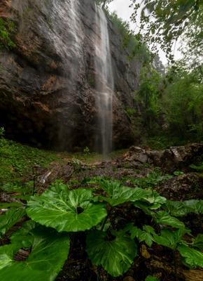 Водопад Пальмовый Водопад горы лес Каньон Курджипс Мезмай