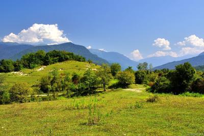 Абхазия абхазия горы достопримечательность кавказ пейзаж природа ущелье лес