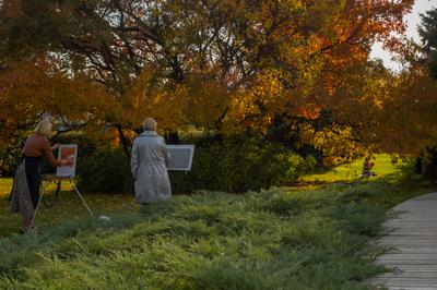 ***Минуты творчества художники этюд парк москва осень музеон