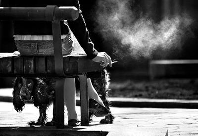О пассивном курении... курение
