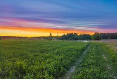 *** поле вечер дорога машина закат облака трава