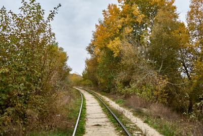 Железная дорога в Херсоне херсон железная дорога путь корабел природа осень