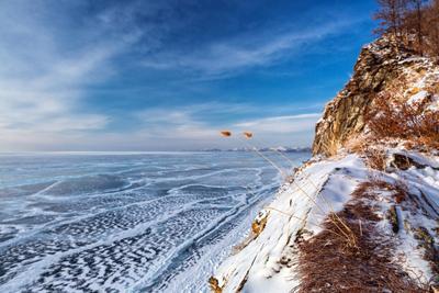 Байкальский берег Байкал Ольхон озеро зима лёд скала февраль утро мороз холод рассвет берег небо синева травинка