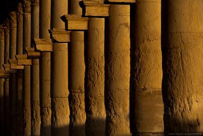 Пальмира пальмира сирия колонны памятник архитектура