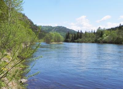 Река Мана Сибирь лето вода река