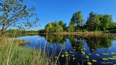 Тишина на Финском  озере СПб Парголово Финское озеро