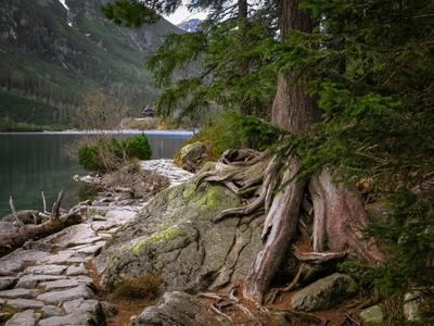 Удержаться Озеро горы Татры Польша