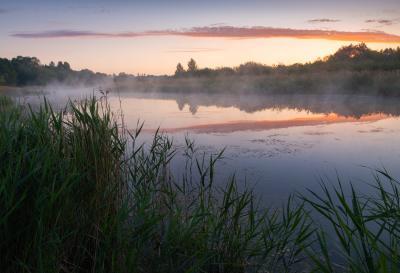 Не экзотика пейзаж рассвет солнце река туман деревья лучи