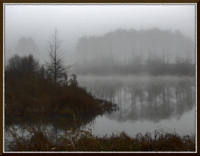 ... а недавно здесь русалок видели ... вода, озеро, болото, кусты, берег, трава, туман, деревья, русалки, небо, серое, коричневое, черное, белое