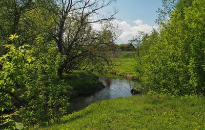 Зелёный выходной. пейзаж весна река