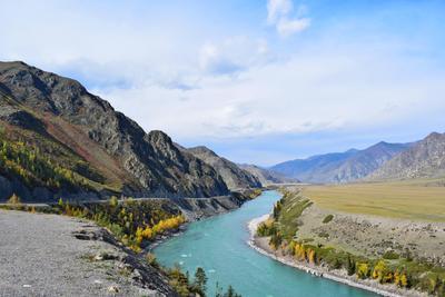 Катунь  конец сентября Горный Алтай пейзаж реки Катунь nataly-teplyakov