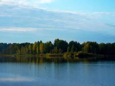 п. Раздолье, Лен. Обл. природа лес река рыбак