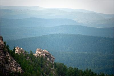 Мыс горы лес