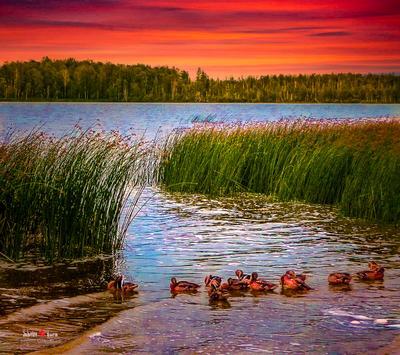 Закат на озере Тараскуль