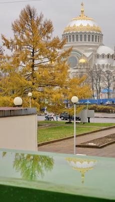Никольский собор в Кронштадте Кронштадт, Никольский собор, отражение, купол
