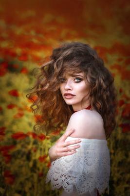 *** мак цветение .портрет поля маковые