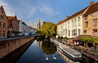 Brugge : morning swan Брюгге Бельгия Brugge Belgium EGRA ЕГРА