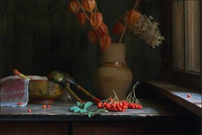 С рябиной дача осень крынка рябина миска ложки физалис