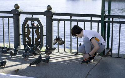 мальчик и голуби TangodeZorros голуби