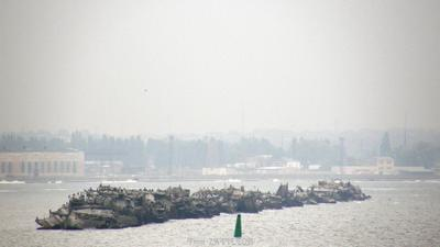 Акватория 1004 море порт брекватер пересыпь