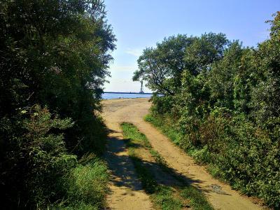 Сквозь облепиху  к морю..... облепиха кусты дорога август море рыбалка