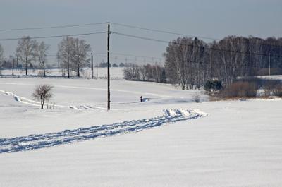 *** Сибирь зима снег иней след