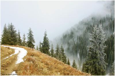 надвигался туман