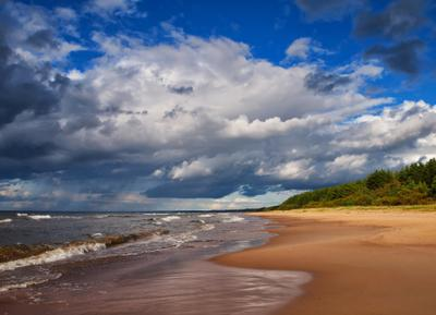 Вдоль берега... берег море облака Финский залив