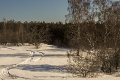 Конец марта пейзаж весна март лес